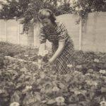 8 Leny Polman aan het werk op de kwekerij