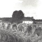 Foto 21-1 Visser Jufferstraat (JB; Op de achtergrond de bossen van de Elshof)