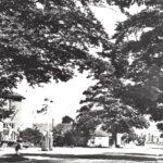 Foto 26-2 Malden Rijksweg 1960 (JB; Links cafe de Kroon van de familie M. van Wees met bezinepompen)